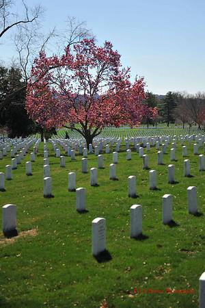2nd Lt J.T. Wroblewski 10th Memorial Ceremony, 6 APR 14