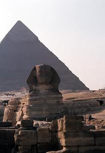 Egypt 1982
