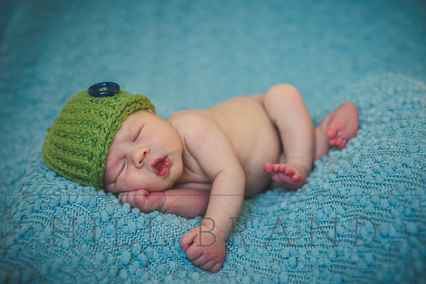 Ben: Newborn & 6 Month Sessions