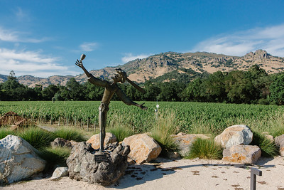 Chateau Montelena Winery & Stag's Leap Wine Cellars