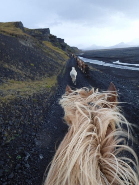 Riding Icelandic horses in Iceland! A most spectacular adventure.