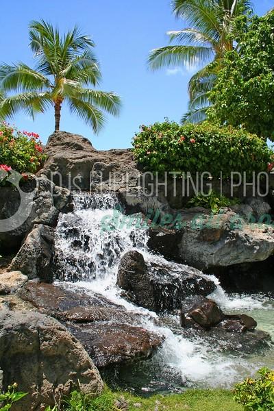 Palm Falls_batch_batch.jpg