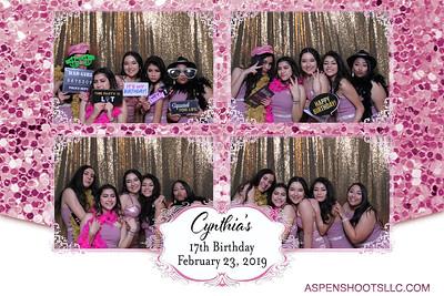 Cynthia's 17th Birthday