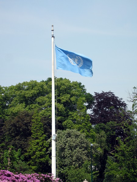 The flag of the United Nations, at the Vredespaleis (Peace Palace)