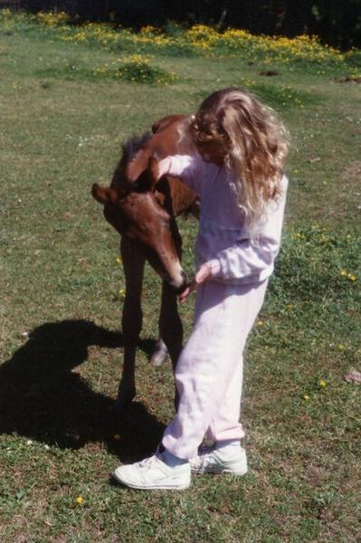 foal.jpg