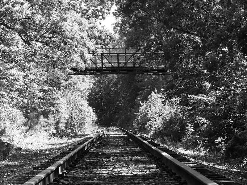 013 Tracks.jpg