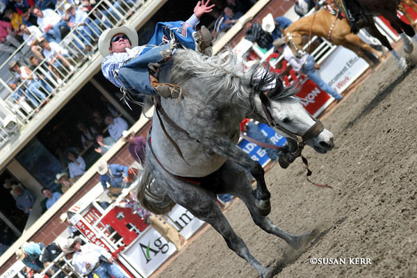 Old Rodeo Pics