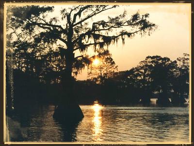 Louisiana 1964, 1980, 1992,  2015