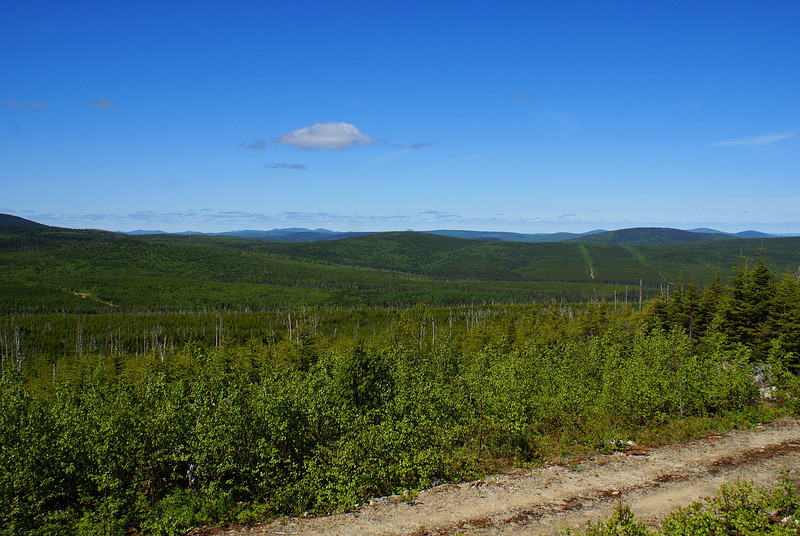 I spent the summer of 2010 in the Christmas Mountains of northcentral New Brunswick, studying the threatened Bicknell's thrush with the University of New Brunswick.  The Christmas Mountains were very remote, with untold miles of wilderness punctuated now and again by logging roads.  This is a view from the summit of Sweat Hill, facing west.  A few logging roads are visible in the valley.