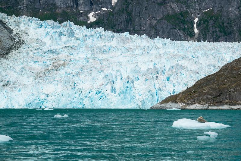 Petersberg Alaska 2019-24.jpg