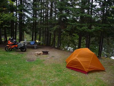 Greenville tag/fox/camping 9/-09