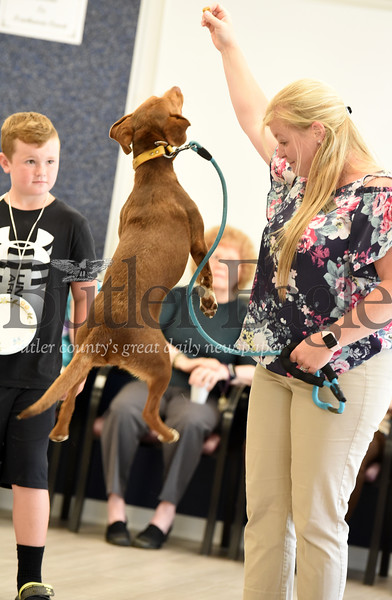 Harold Aughton/Butler Eagle: Krystle Pry, Director of Resident Care, holds a treat for  Remi, a beagle mix,   during the Newhaven Court At Clearview annual dog show.