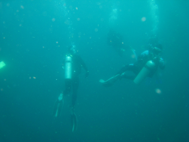 Diving in the Galapagos (211 of 392)