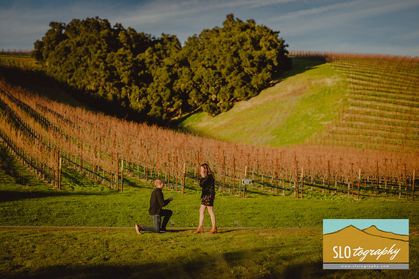 Jacob'+Jenna's Proposal ~ Niner Winery