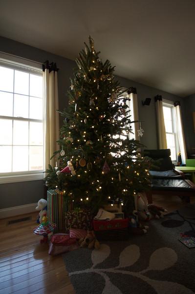 Christmas 2012 in C'ville