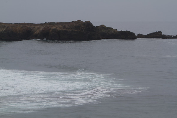 2012 Sea Ranch