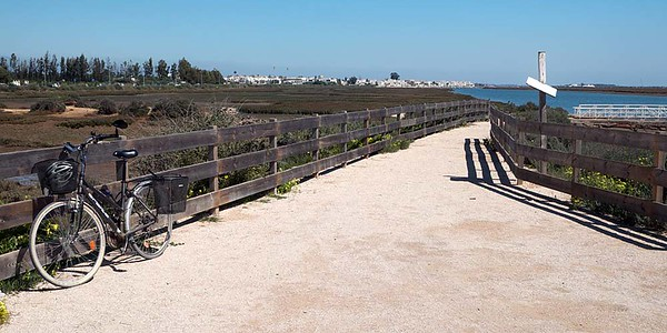 Monday 20 March 2017 : Graveyard of the Anchors [Cemiterio das Ancoras], Praia do Barril, Tavira Island [Ilha de Tavira], Algarve