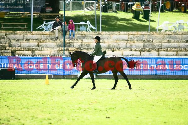 2014 09 29 Perth Royal Show Hunter Galloway