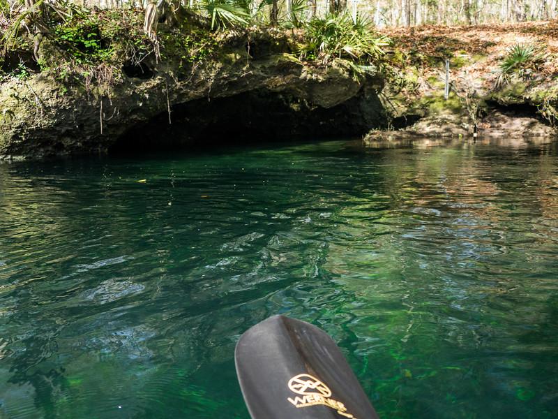 02-23-2019 Ichetucknee River kayak (38 of 78).jpg