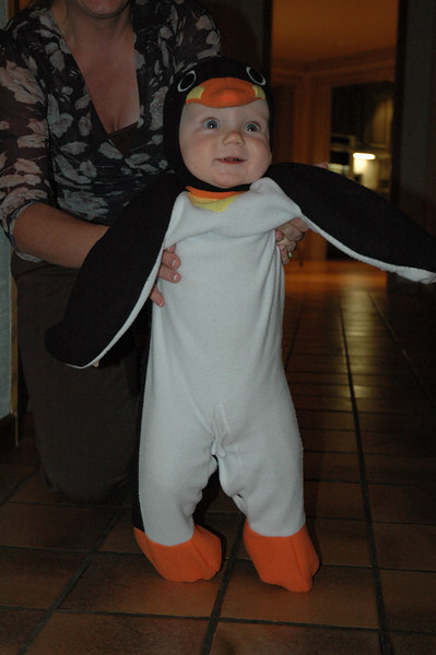 March of the Penguin 2 012.jpg