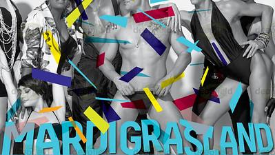 Mardi Gras Party 02 03 2013