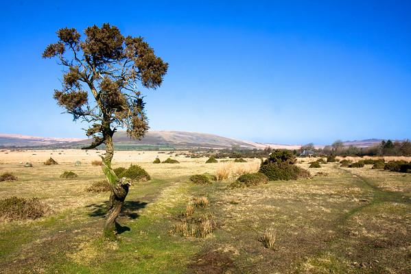 Neolithic journeys