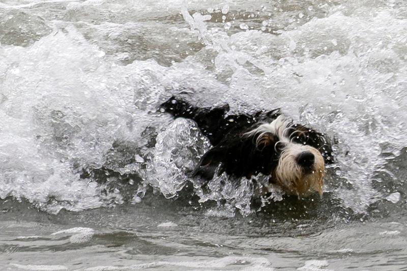 ocean beach quarantine 1223805-30-20.jpg