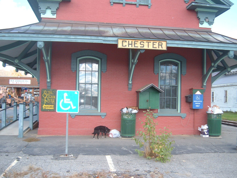 "Phew!!!! Chester Depot, Vermont.........Station is "" Going To The Dogs""......And Reagan The Railroad Dog Agrees!!!!   Being used as a garbage drop-off by the locals. It is a shame..  October 2012"