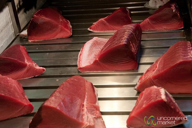 Serious Cuts of Tuna - Tsukiji Fish Market, Tokyo