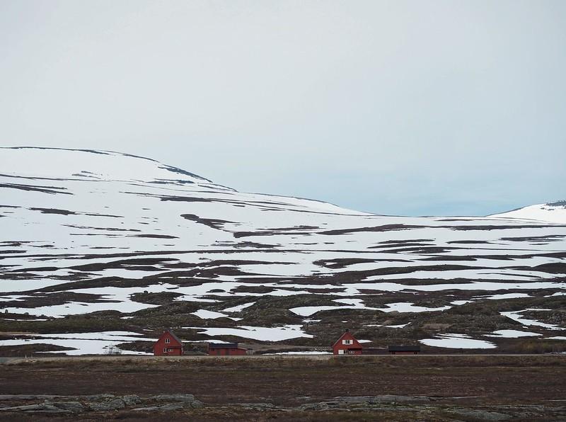 Poolcirkel Noorwegen 01-07-17 (82).jpg