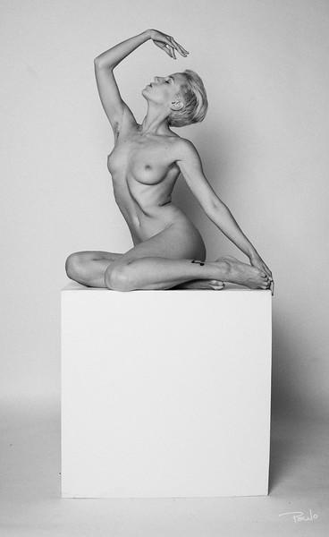 Jasmine Side IMG_5702.jpg