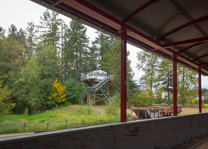 bc forest discovery centre-9.jpg