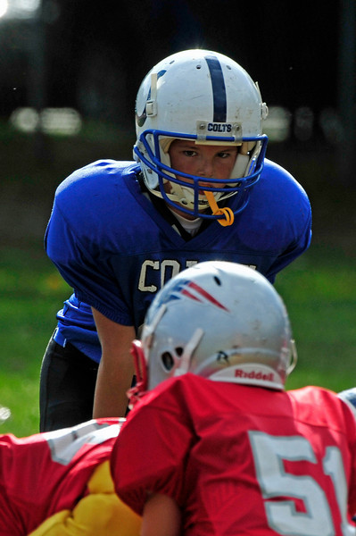 2010 WHYFL Season - Mighty Mites