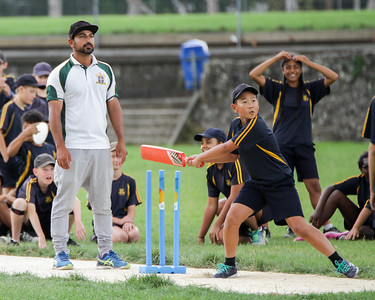 2017 Cricket Skills Training