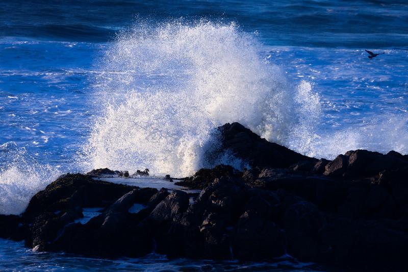 Crashing Wave 3, Pescadero State Beach, California, 2010