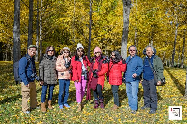 Gingko Tree  Field Trip 2019