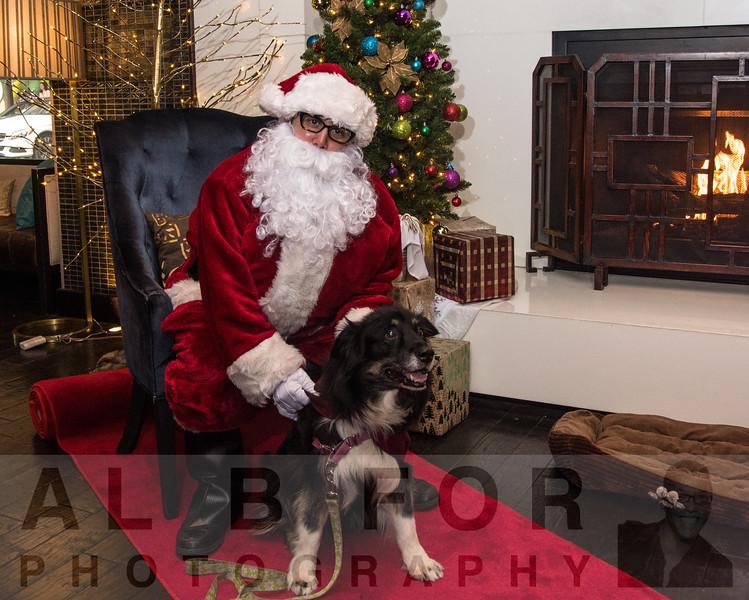 Dec 2, 2017 Santa Paws@ Kimpton Hotel Palomar