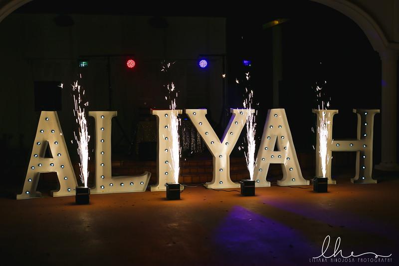 Aliyah3.jpg