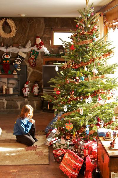 2012-12-24 Carnevali Christmas Eve
