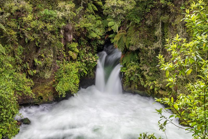 Rotorua / Taupō
