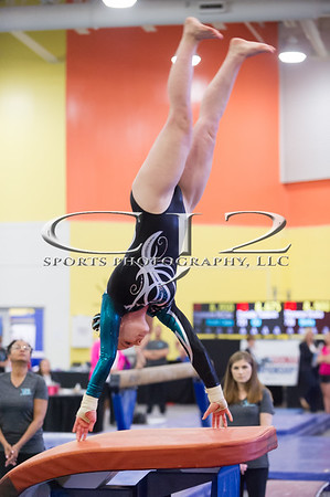 4-13-2018 Apex Gymnastics Region 7 Level 9
