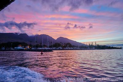 Maui 2021