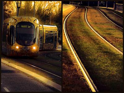 Light Rail & Ray Light
