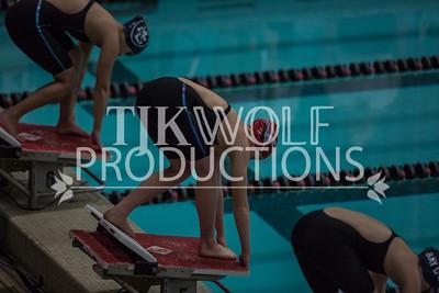 WW State Swim 2017