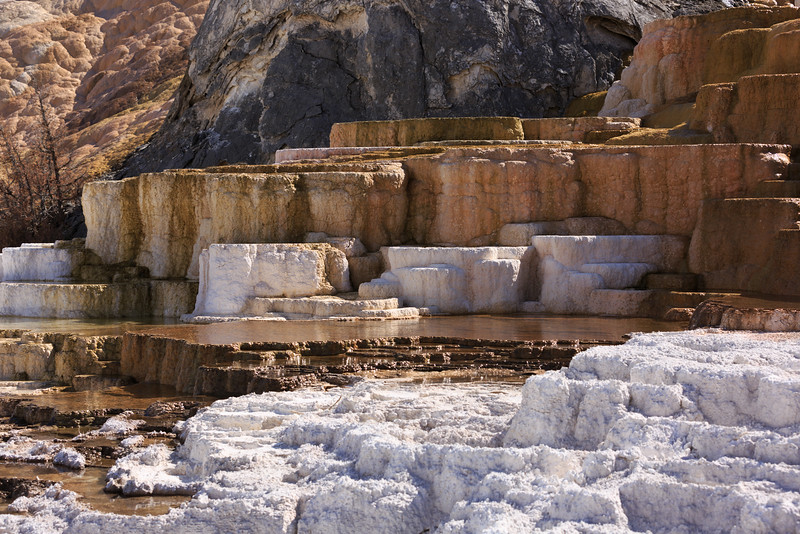 Mammoth Hot Springs 008