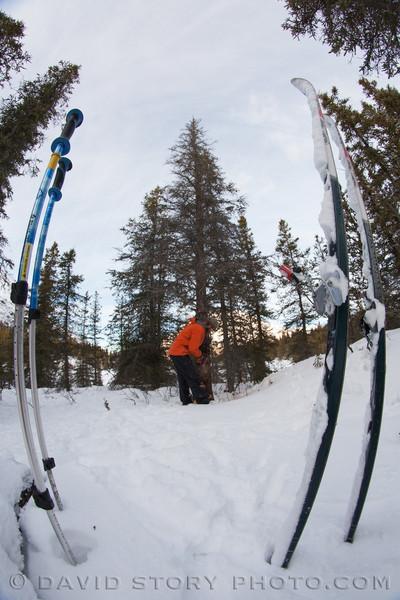 Ski saw.