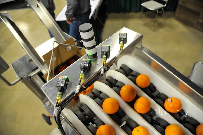 2020 Citrus Showcase