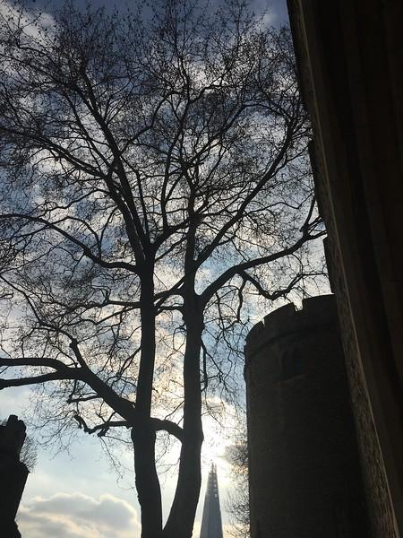 Tower of London(1).JPG