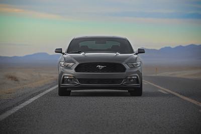2015 Mustang Detailed (02.14.15)