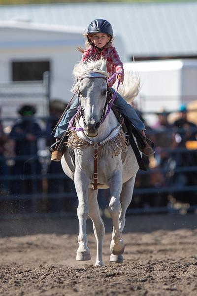 2019 Rodeo 1 (982 of 1297).jpg
